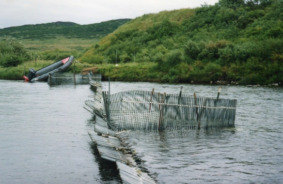 looking down the weir at the upstream trap box and the downstream box (far side)