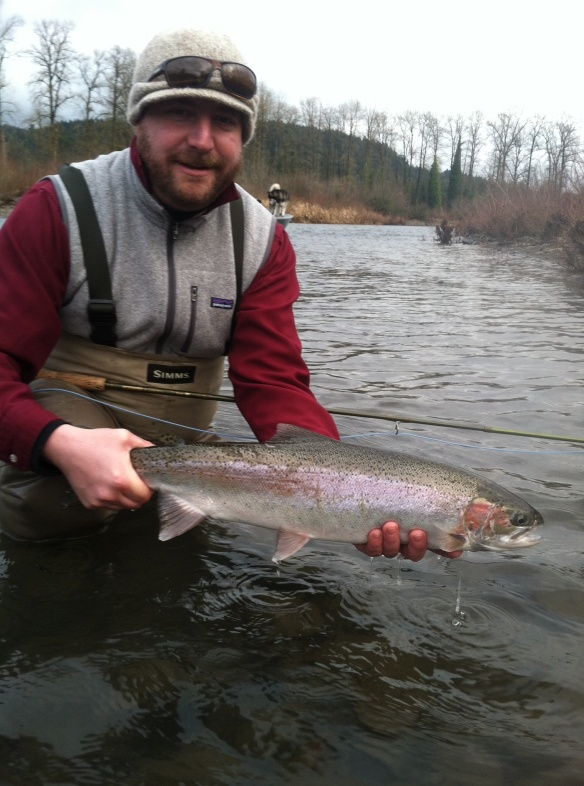 Winter steelhead, Oregon USA 2013